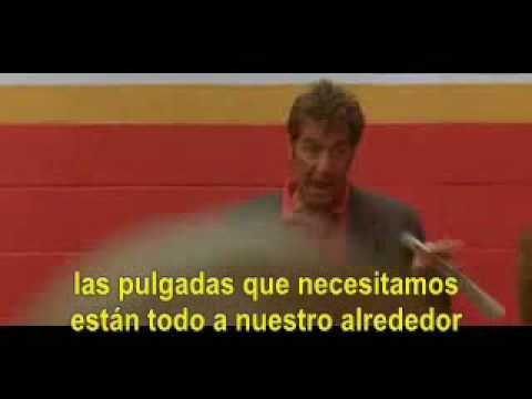 Cine Un Domingo Cualquiera Discurso Al Pacino