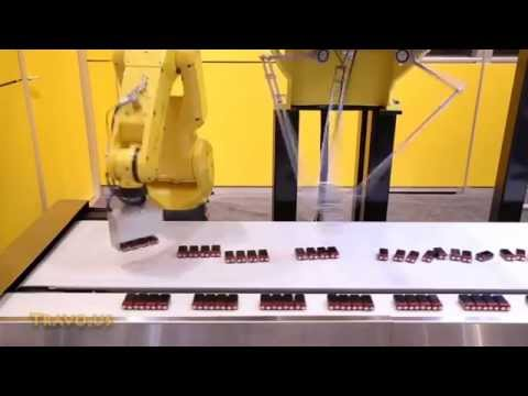 Two Ultra Fast Robots Pick and Place Batteries to Form Group Patterns