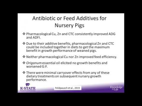 Latest Update on K-State Applied Swine Nutrition Research