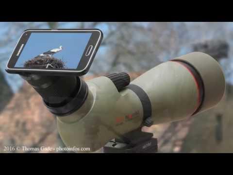 Digiscoping smartphone mit dem kowa prominar tsn spektiv