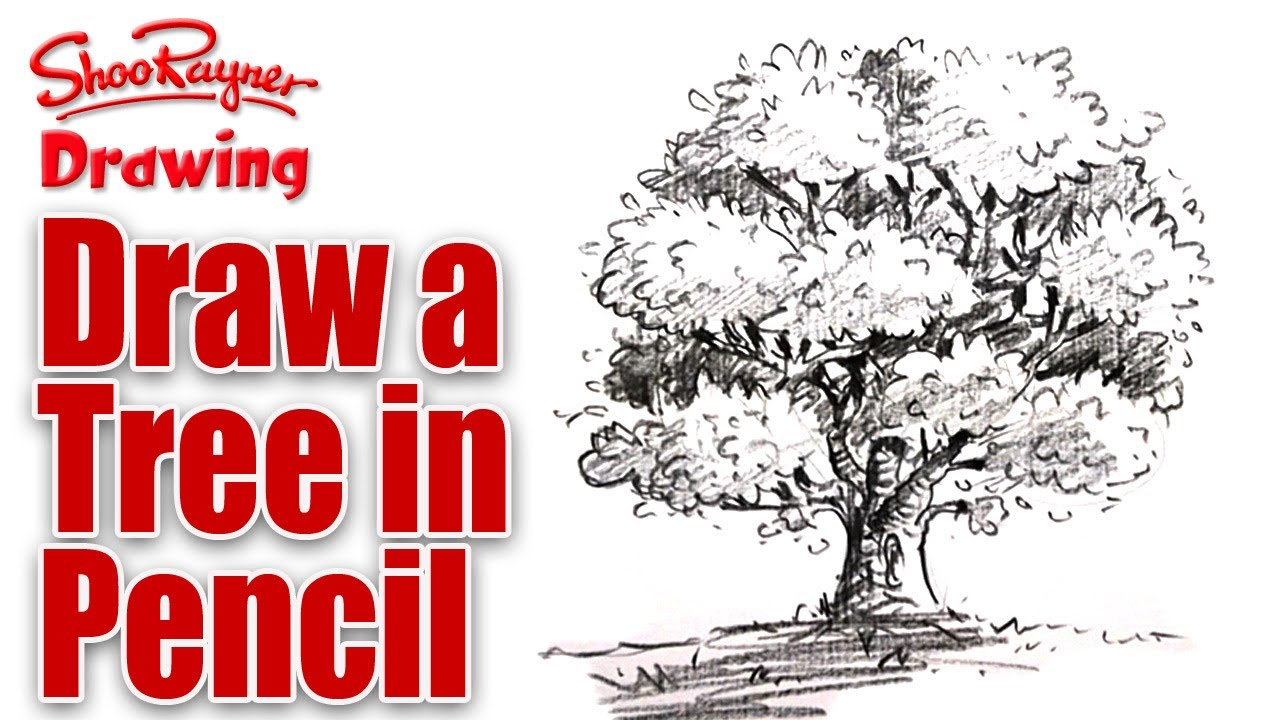 Learn To Draw Trees - Free downloads and reviews - CNET ...