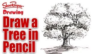 learn to draw a tree in pencil
