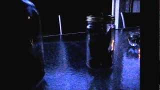 Realistic LED Brass Fire Flies in a Glass Jar