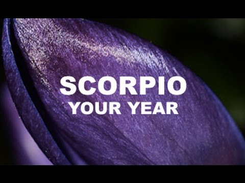 THE YEAR AHEAD - SCORPIO - March 21 2017 - 2018