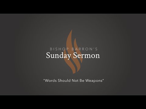 Words Should Not Be Weapons — Bishop Barron's Sunday Sermon