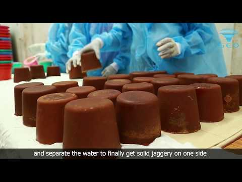 Modern Jaggery Production | Boiler Free | SED