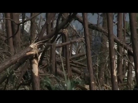 Hurricane Michael blamed for 6 deaths