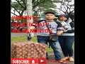 Suara Burung Gelatik Batu Gacor  Mp3 - Mp4 Download