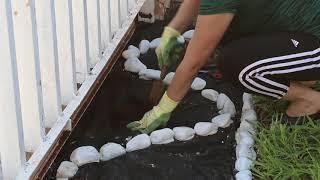 Gambar cover Jardineria. ¿Cómo decorar el jardín con piedras y plantas? Ideas paso a paso. liclonny