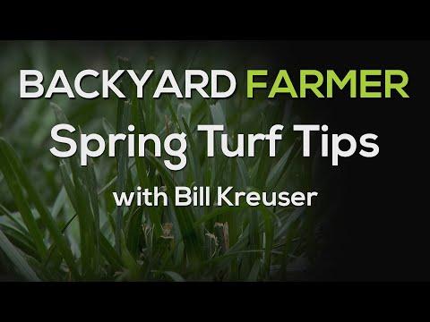 Spring Turf Tips