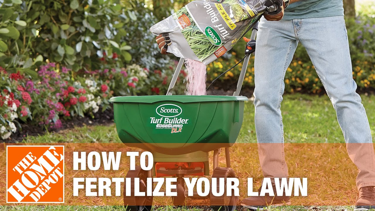 How To Fertilize Your Lawn The Home Depot