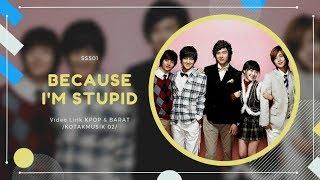 SS501 - 'BECAUSE I'M STUPID' Easy Lyrics (SUB INDO)  | BOYS OVER FLOWER OST
