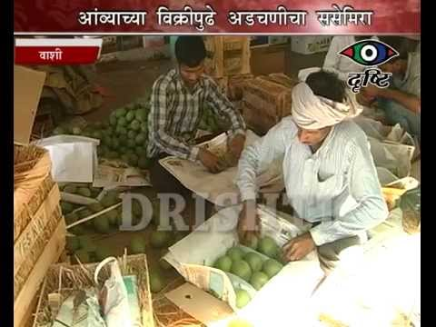 APMC Mango Merchants facing problems