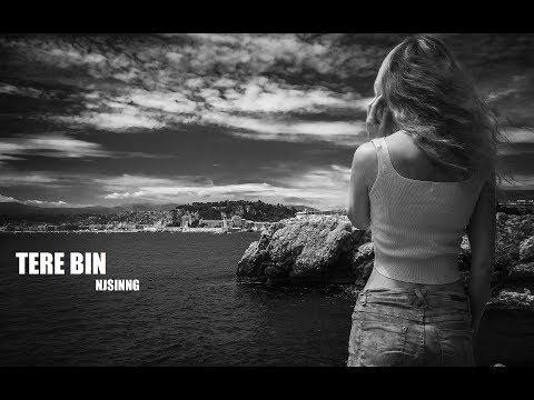 NJSINNG – TERE BIN (Audio) ft. Annie Drury
