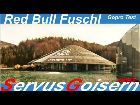 Red Bull GmbH Energy-Drink Österreich