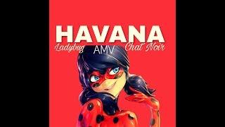 HAVANA//AMV//LADYBUG
