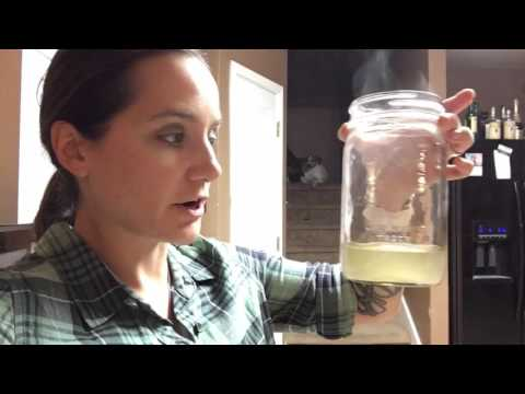#293 FILTER WATER WITH COFFEE FILTER [365 Survival]