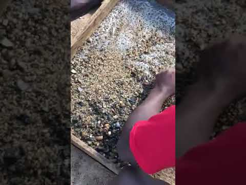 Gold Mining Owner Dr Shariff Africa Ghana Accra