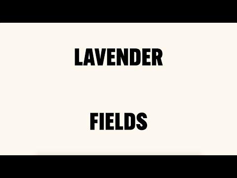 Nick Cave & Warren Ellis - Lavender Fields (Lyric Video)