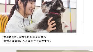 専門学校穴吹動物看護カレッジ紹介動画(ショートver.)