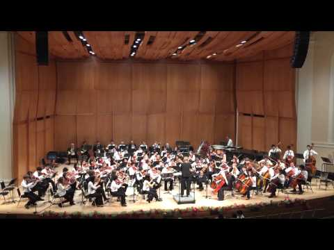 DUSS Youth - Symphony No. 1 (Beethoven)