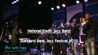 Fifteen of the musicians playing at the Standard Bank Jazz Festival 2012