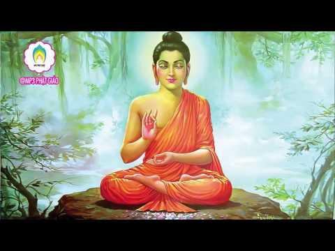 Những Câu Chuyện Nhân Quả Phật Giáo Có Thật - Nhân Quả Giải Theo Phật Giáo Phần 2