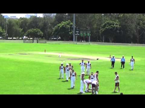 Balmain South Sydney v Burwood Briars, Frank Gray Shield, February 1, 2015