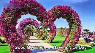 Assamese song, good morning