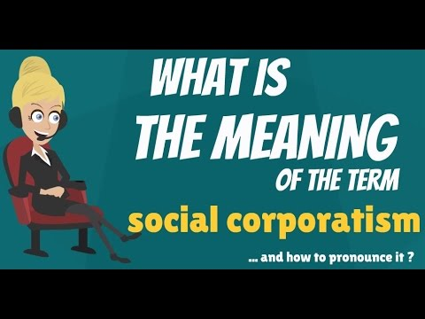 What is SOCIAL CORPORATISM? What does SOCIAL CORPORATISM mean? SOCIAL CORPORATISM meaning