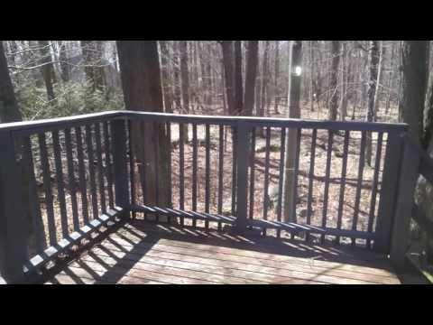 PENNSYLVANIA HOUSE HUNTING VLOG/LOUISE GARDNER