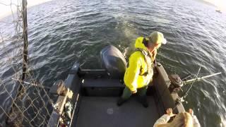 Puget Sound King Salmon Fishing 2015
