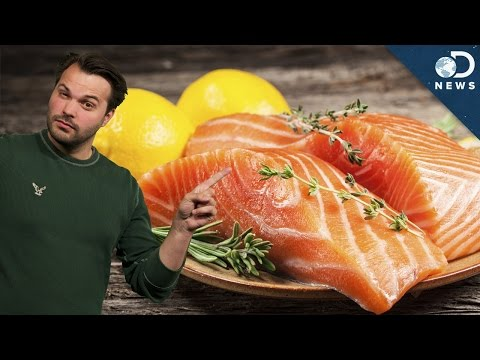 Should You Avoid Farmed Fish?