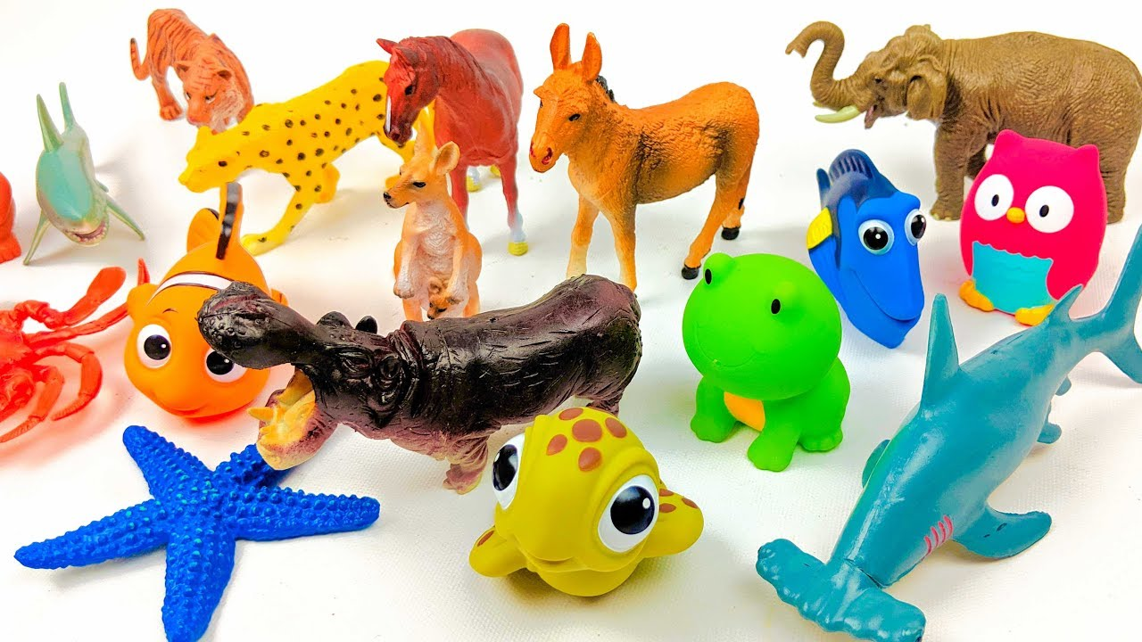 Funnest Toys Kids Learning Show Featuring Lots of  Zoo Animals