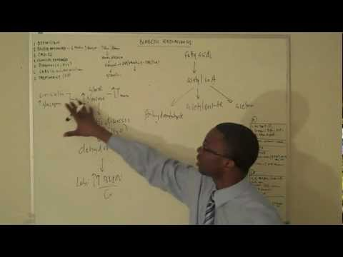 Diabetic ketoacidosis Lecture Part 1(DKA)