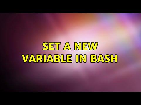 Ubuntu: Set A New Variable In Bash
