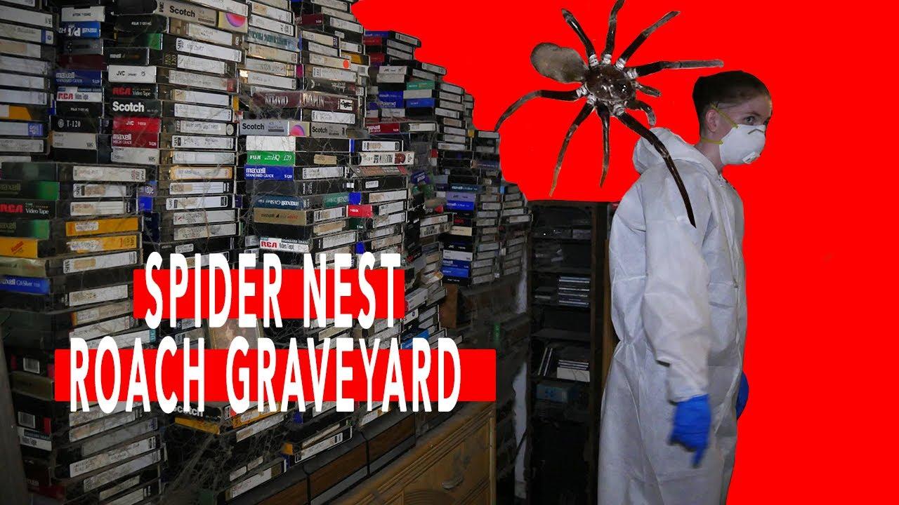 Spider Nest/Roach Graveyard   Lakeland, FL