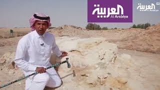 وقفات على خطى العرب 30