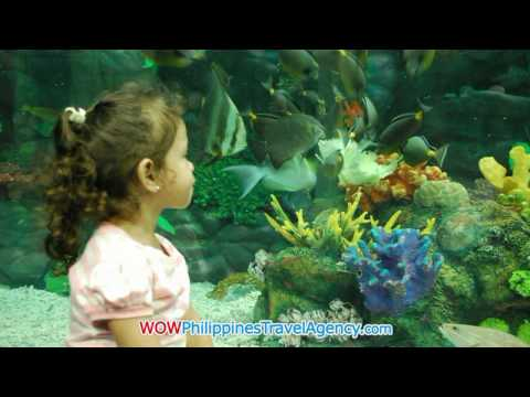 Manila Ocean Park - Manila Hotels - WOW Philippines Travel Agency