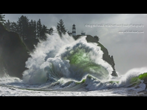 The Beautiful Wild Pacific Northwest (HD)