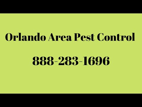 Orlando Pest Control - Видео онлайн