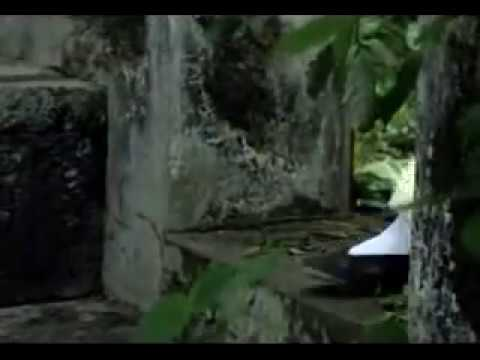 gamay oten (kung pow)
