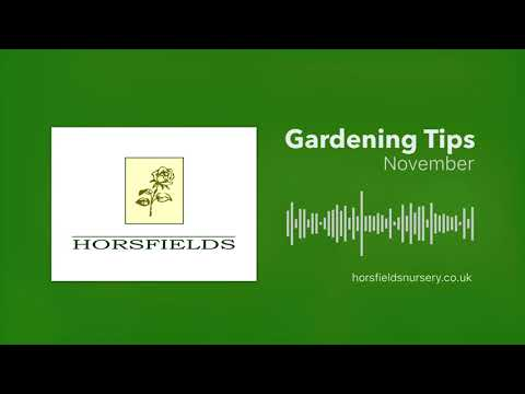 Gardening Jobs In November