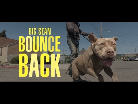 Big Sean - Bounce Back YAK DANCE LIFE...