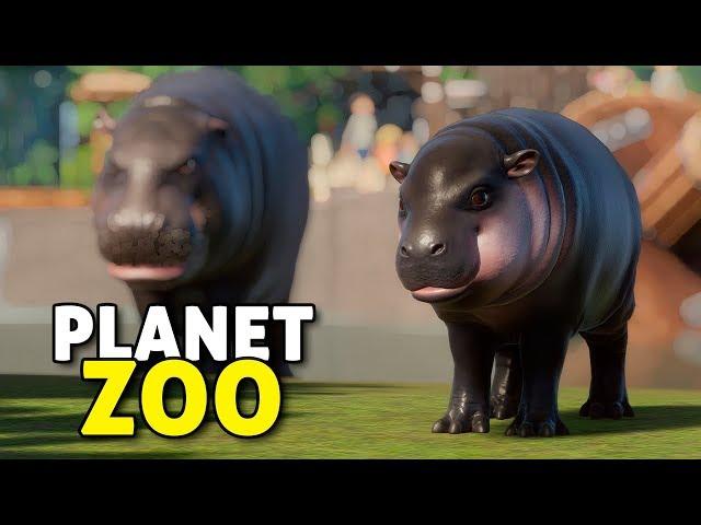 O Pântano Sombrio (e os hipos fofinhos) | Planet Zoo #05 - Sandbox Gameplay PT-BR