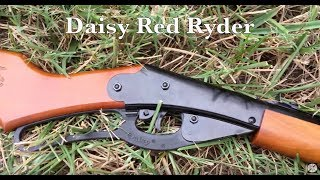 Yard Shooting - Daisy Red Ryder 1938 Airgun