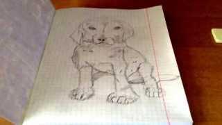 Рисунок щенка .