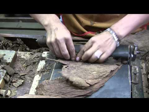 Nestor Plasencia cigar factory, guide tour