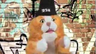 Кошка-наркошка - О чем писать рэп.