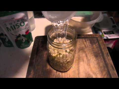 How To Grow Mung Bean Sprouts How To Sprout Mung Beans